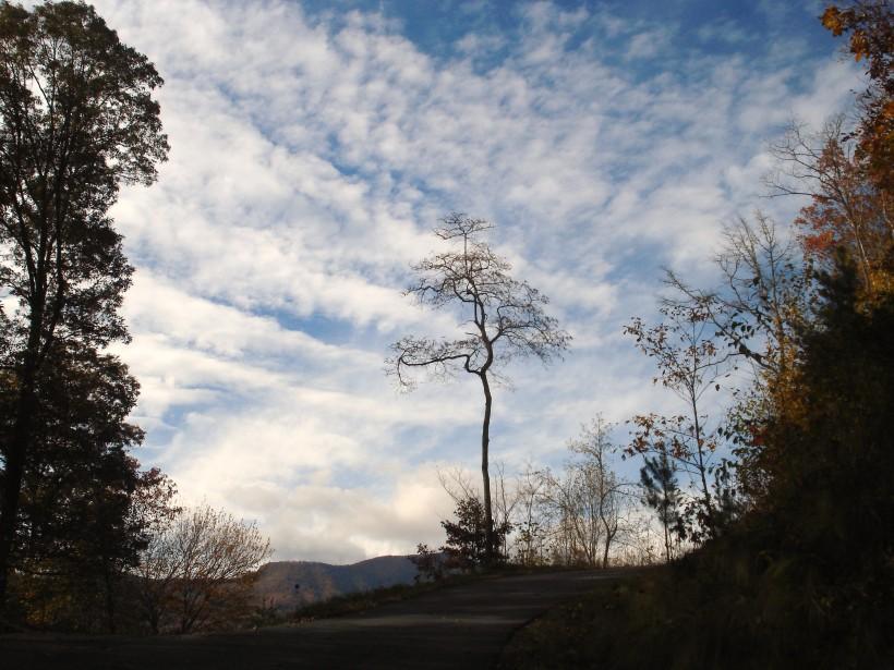 fall-2009-012